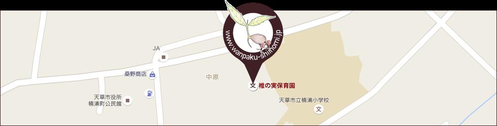 椎の実保育園へのアクセス